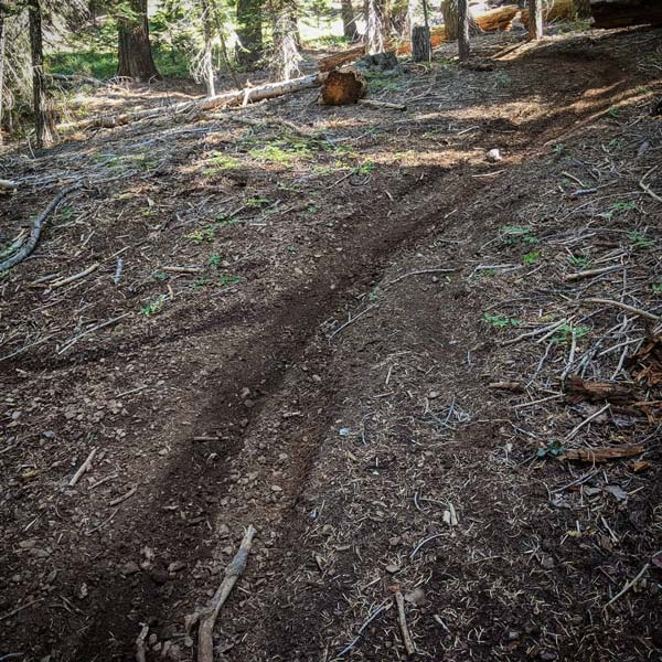 Downieville Trail Conditions and Information on hole in the ground trail map, camp tamarancho trail map, annadel state park trail map, saratoga gap trail map, santiago oaks trail map, wilder ranch state park trail map, hurkey creek trail map, redwood regional park trail map, briones regional park trail map, usnwc trail map, devil's slide trail map,